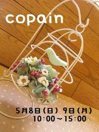 Copain20115_2