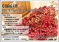 Copain_4
