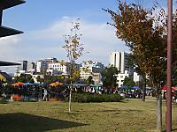 Dsc_1730_2